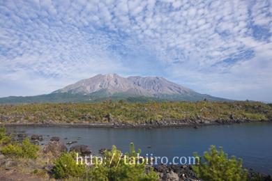 2008,11,05溶岩なぎさ遊歩道43 のコピー.jpg