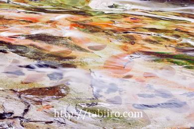 2009,08,02滑床渓谷川底の模様015 のコピー.jpg