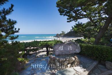 2009,08,07桂浜001 のコピー.jpg