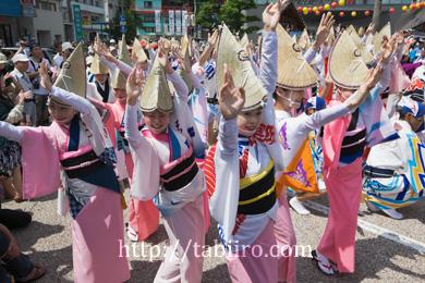 2009,08,12阿波踊り053.jpg