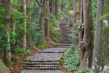 2015,11,18熊野古道大門坂172a.jpg