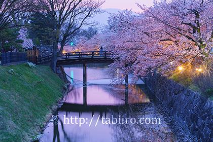 2016,04,10松本城aa.jpg