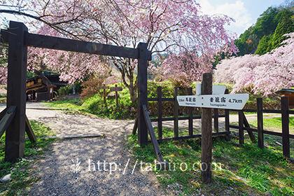 2016,04,19一石栃の白木改番所跡028a.jpg
