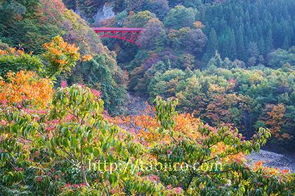 2016,10,26 松川渓谷高井橋050a.jpg