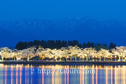 2017,04,16瓢湖の夜桜033a.jpg