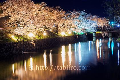 2017,04,18松本城桜並木光の回廊056a.jpg