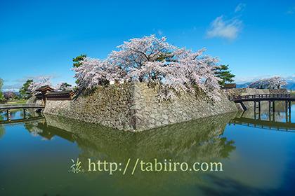 2017,04,18桜咲く松代城跡076a.jpg