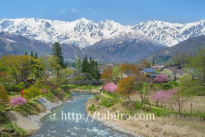 2019,05,09大出公園より姫川越しに白馬三山を望むB.jpg