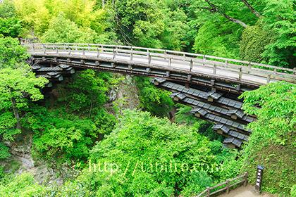 2019,05,20新緑の猿橋021b.jpg