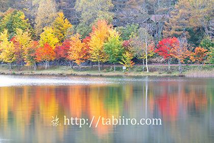 2020,10,16紅葉の女神湖080b.jpg
