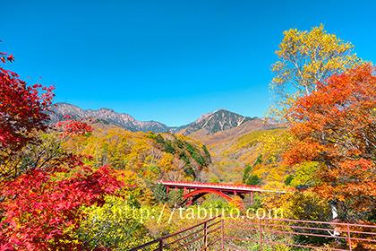 2020,10,26東沢大橋大橋より八ヶ岳を望む076b.jpg