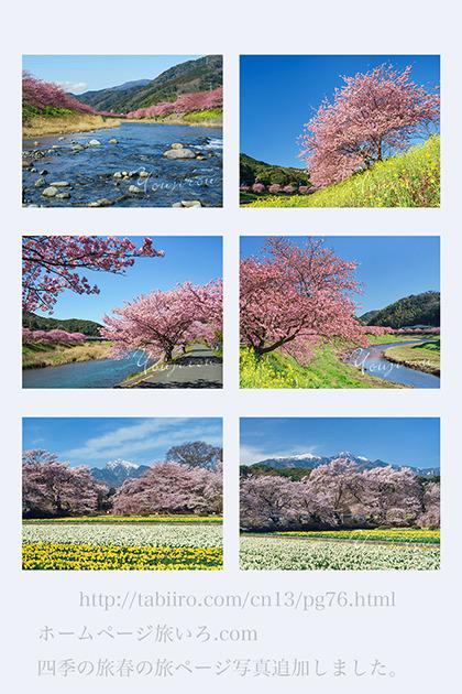 春ページ01.jpg